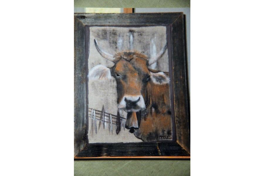 vache-couleur